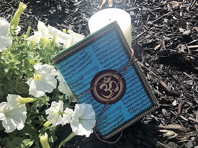 Yogi Surprise July 2017 OM Journal Review