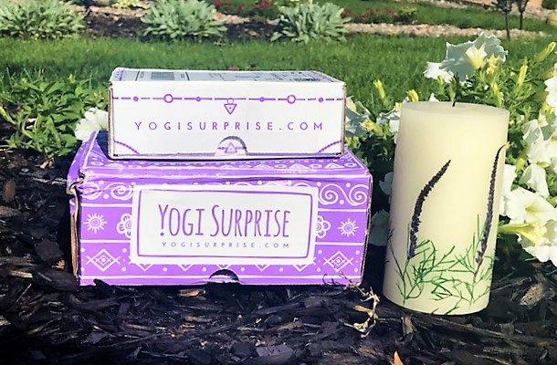 Yogi Surprise July 2017