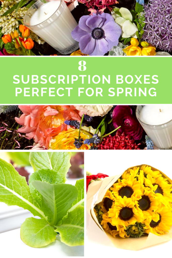 Spring Subscription Boxes